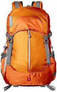 AmazonBasics Sac à dos pour appareil photo, Série Randonnée - Orange de la marque AmazonBasics image 0 produit
