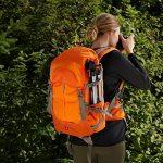AmazonBasics Sac à dos pour appareil photo, Série Randonnée - Orange de la marque AmazonBasics image 1 produit