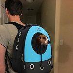 Okbuynow Sac à dos tout Confort pour chiens et chats jusqu'à 15kilos, pour aller faire une promenade, randonnée pédestre et cyclisme (bleu) de la marque image 4 produit
