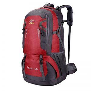 Sac à Dos Randonnée 60L, Sac Trekking Imperméable Pour Voyage Randonnée Camping Trekking Alpinisme Etc de la marque Huanxu image 0 produit
